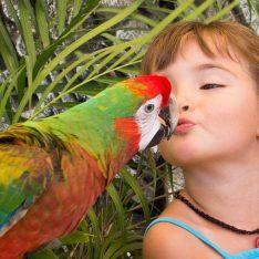 Animal Kingdom Sanctuary-zoo-in-Los-Cabos